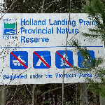 Holland Landing Prairie Provincial Park - January 31, 2016